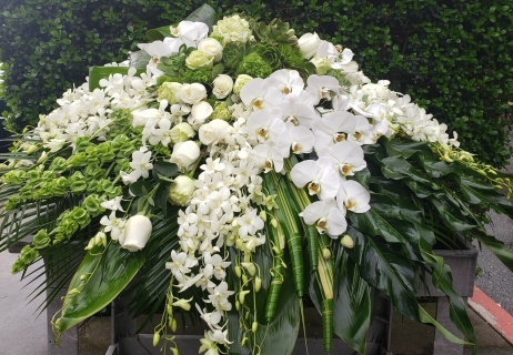 White Orchids and succulents casket spray